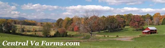 Charlottesville Virginia Farm Realtor