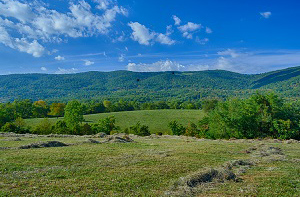 Small farm land for Sale in Afton, VA