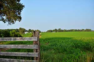 Virginia Crop Farm for Sale