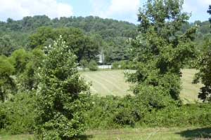 Virginia Farms for Sale