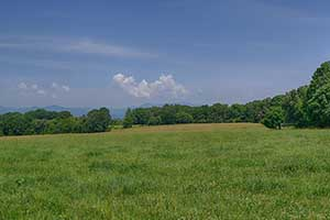 Virginia Farm land for Sale in Nelson County