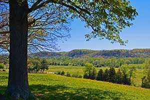 Nelson County Virginia Farms for Sale