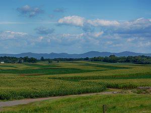 Farm in Virginia for Sale