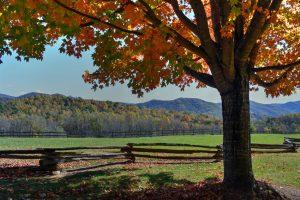 Fencing on Virginia Farms