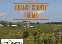 Orange Farms - Real Estate Market Update - Dec. 2018