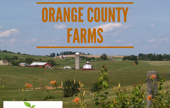 Orange Farms - Real Estate Market Update - Dec. 2018
