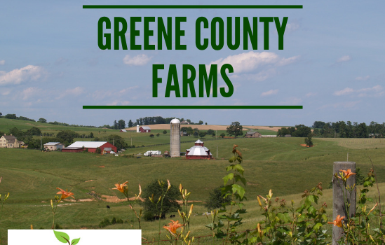 Greene Farms - Real Estate Market Update - Dec. 2018