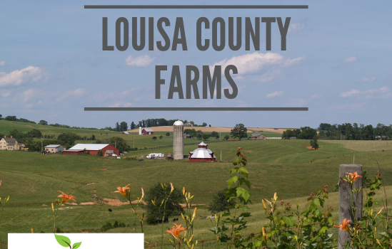 Louisa Farms - Real Estate Market Update - Dec. 2018